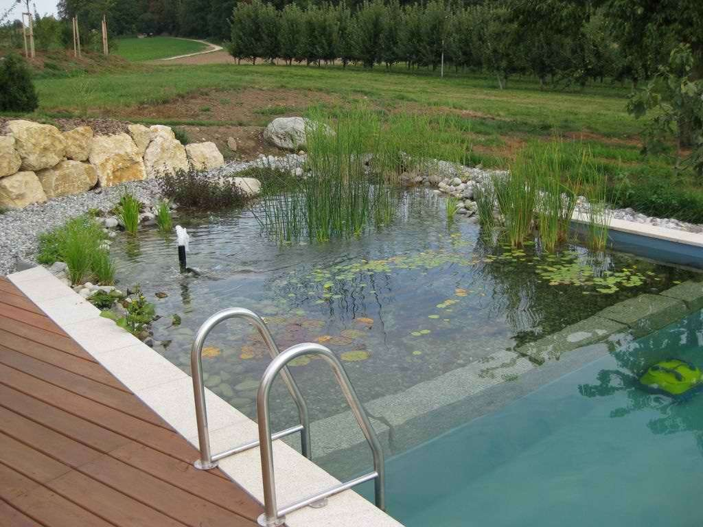 How To Build A Deck Top Pond
