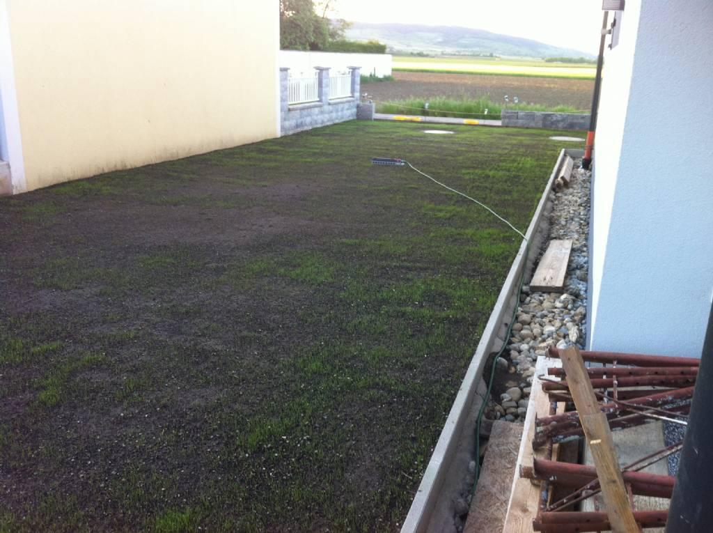 Großartig Garten Neuanlage - Rasen - Seite 4   Forum auf energiesparhaus.at JL78