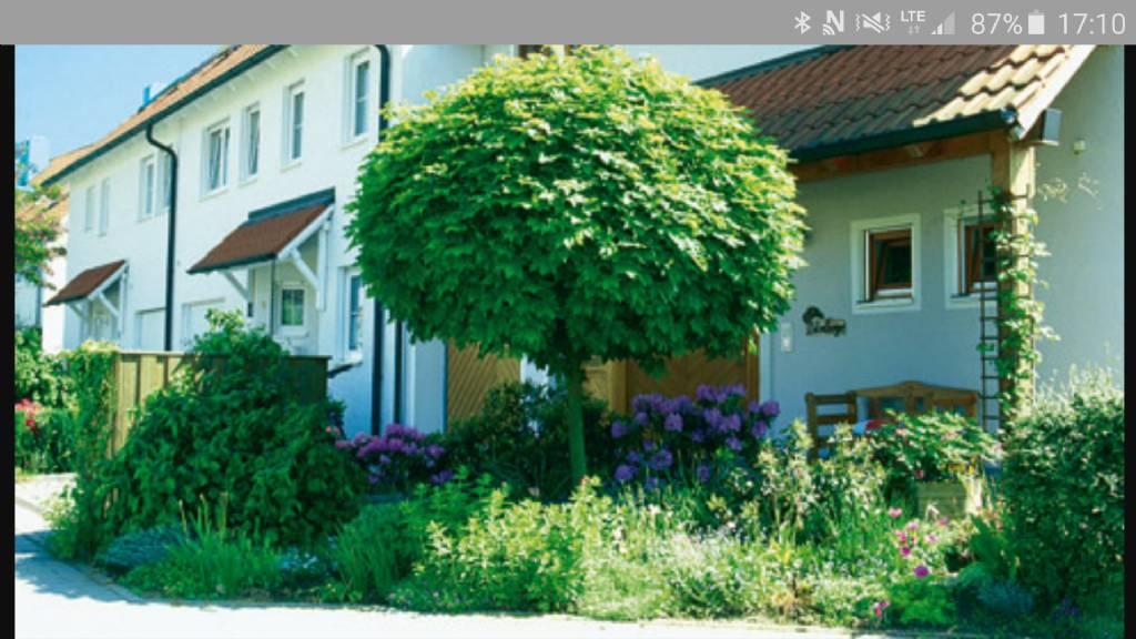 Bäume Vorgarten Nordseite welcher baum neben eingangsbereich gartenforum auf energiesparhaus at