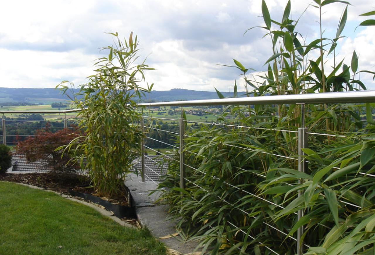 Zaun Auf Wurfsteinmauer Setzen Gartenforum Auf Energiesparhaus At